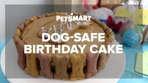 birthday cake for dogs petsmart kitchen doggie birthday cake