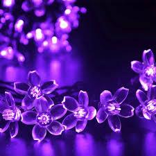 blumen lila innootech led solar blumen lichterkette 5 meter 50er lila