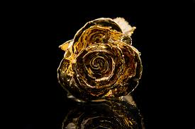 gold roses midas customs gold roses