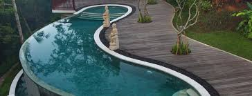 architecture cool backyard design with clear modern kidney