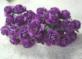 purple roses purple roses