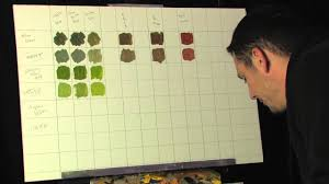 Online Paint Color by Painting Tips And Tricks Creating A Color Mixing Chart For