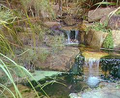 The Australian Botanic Garden Australia Gardens Australian National Botanic Gardens