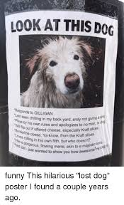 Lost Dog Meme - 25 best memes about lost dog posters lost dog posters memes