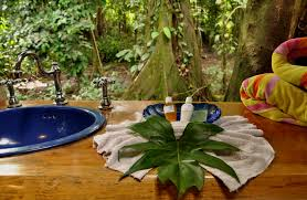 Small Mosquitoes In Bathroom Faq Costa Rica Questions About Costa Rica Costaricatreehouse Com