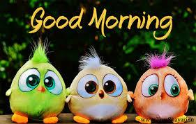 good morning images in hindi english shayari status u0026 wishes quotes