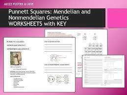 genetics punnett squares mendel non mendelian student