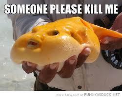 Kill Me Meme - someone please kill me fish meme picture punjabigraphics com