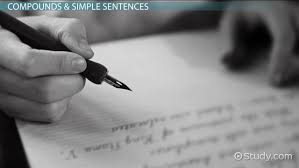 what are simple sentences examples u0026 concept video u0026 lesson