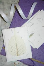 plantable paper paper you can plant thriftyfun