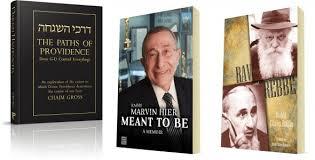 the rebbe book book reviews torah musings
