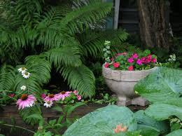 Shady Garden Ideas Shade Garden Ideas Pictures Photograph Shady Garden Ideas