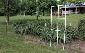 Decorate A Chain Link Fence Decorate Your Fence With A Custom Trellis From Pvc Pipe Goodwill