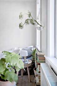 everything you need to know about lagom interiors botanical deer