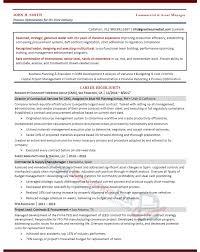 director of finance resume executive resume samples professional resume samples