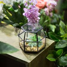 online buy wholesale jewelry terrarium box from china jewelry