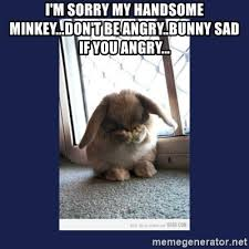 Angry Bunny Meme - i m sorry my handsome minkey don t be angry bunny sad if you