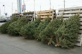 christmas tree for sale post list lakeview ford lincoln inc