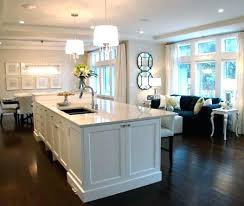 Dark Shaker Kitchen Cabinets For The Love Of Dark Wood Flooring White Shaker Kitchen Cabinets
