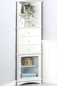Bathroom Storage Cabinet Corner Bathroom Storage Cabinet Stroymarket Info