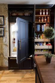 kitchen tall pantry cabinet kitchen storage ideas pantry drawers