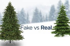 vs real trees the perennial debate globalnews ca