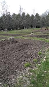 community garden builds new partnerships inver hills news