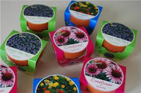 flower pot favors cheap diy baby shower favors ideas babygaga
