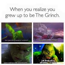 Grinch Meme - when you realise your the grinch funnys pinterest grinch