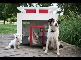 Modern Dog Furniture by Modern Pet Furniture Design Ideas Amazing Collection Of Pets