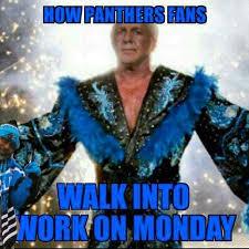 Football Memes - carolina panthers football memes funny best photos