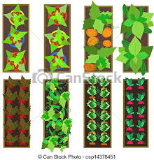 vegetable clipart vegetable gardening pencil and in color