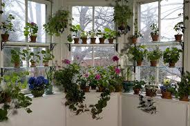 How To Arrange Indoor Plants by How To Garden Landscape Plant Garden Design