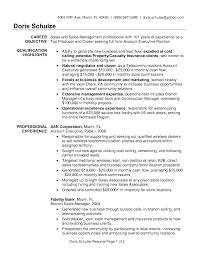 Free Executive Resume Templates Format Executive Format Resume