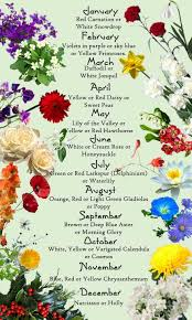 flowers of the month discover the birth month flowers and flower meanings here flowers