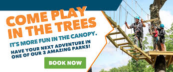 zip lines and high ropes and big thrills edge adventures
