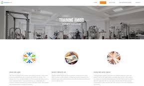 devradius professional website developers and designers