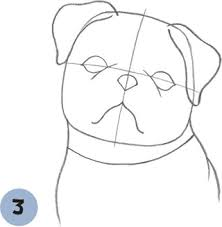 pug puppy learn to draw dogs u0026 puppies book