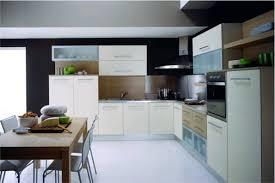 Modern European Kitchen Cabinets by Kitchen Cabinets Ideas Modern European Kitchen Cabinets