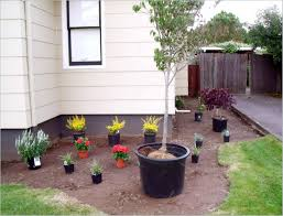 Front Yard Walkway Landscaping Ideas - front yard landscaping ideas christmas lights decoration