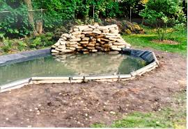 Pond Landscaping Ideas Garden Design Garden Design With Garden Pond Design Ideas