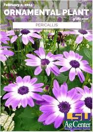 35 best gardening louisiana plants images on