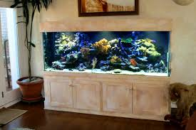 Fish Tank Living Room Table - coffee table coffee table fish tankr sale phenomenal images