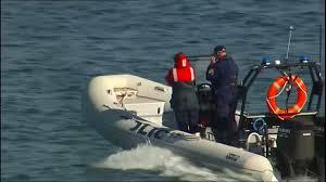 australian shepherd kills child diver killed by shark in australia as daughter watches