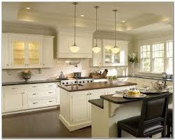 maple kitchen cabinets houzz traditional kitchen idea in new york
