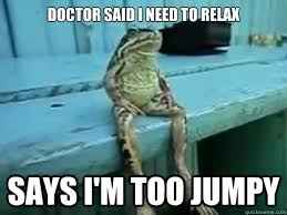Relax Meme - relax funny google search funny animals pinterest funny