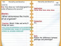 section 3 3 u201cmendel u0026 heredity ppt download