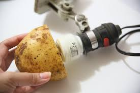 How To Dispose Of Light Bulbs How To Remove A Broken Light Bulb With A Potato 9 Steps
