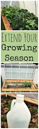 3 ways to extend your growing season early spring gardens and