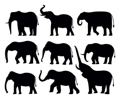 free elephant silhouttes vector vector art u0026 graphics freevector com